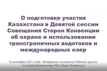 Четвертое заседание Рабочей группы по председательству Казахстана в Бюро Конвенции об охране и использовании трансграничных водотоков и международных озер