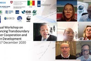 Глобальный Семинар по вопросам финансирования сотрудничества в области трансграничных водных ресурсов и развития бассейнов